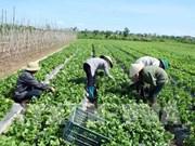 La société FLC FAM noue une coopération avec des entreprises agroalimentaires israéliennes