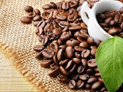 Plus de 3,5 milliards de dollars d`exportations de café vietnamien en 2018
