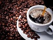 Une entreprise japonaise va construire une usine de transformation du café au Vietnam