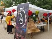 Le premier Festival fu Vietnam à Lyon, en France