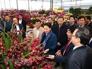 La présidente de l'AN Nguyen Thi Kim Ngan visite Hung Yên