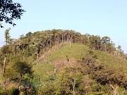 100.000 ha de forêt à gérer de manière durable chaque année