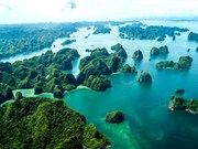 Baie d'Ha Long, une destination unique dans la vie