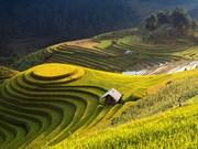 Mu Cang Chai parmi les destinations les plus colorées au monde