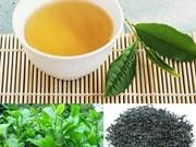 Exportations du thé du Vietnam en hausse de 15,4% au premier trimestre