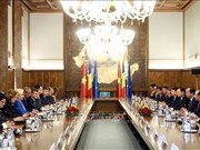 Vietnam-Roumanie : entretien entre les deux Premiers ministres