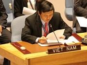 Des amis étrangers soutiennent pour le Vietnam comme membre non permanent du Conseil de sécurité