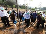 Têt de la plantation d'arbres : belle coutume de célébration de l'arrivée du printemps