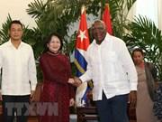 Promotion des relations de solidarité fraternelle Vietnam-Cuba