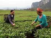 Nécessite de six millions de travailleurs formés à l'agriculture d'ici 2030