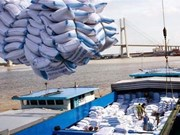 Montée en flèche des exportations vietnamiennes de riz en Indonésie en dix mois
