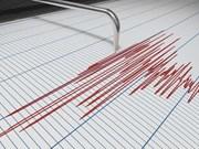 Un séisme de magnitude 6,3 frappe l'est de l'Indonésie, pas d'alerte au tsunami