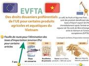 EVFTA: Des droits douaniers préférentiels de l'UE pour produits  agricoles et aquatiques du Vietnam