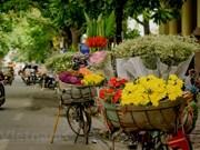L'automne fait son apparition dans les rues de Hanoï