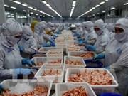 Exportations de crevettes : 4,2 milliards de dollars visés cette année