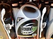 Le glyphosate émiliné de la liste des produits autorisés au Vietnam