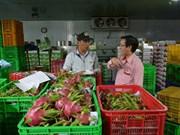 La croissance des exportations de produits agricoles ne s'avère pas durable