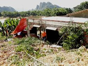 Quang Binh: de graves glissements de terrain mettent en danger près de 20 ménages