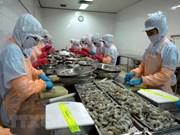 Crevettes : Le Canada, un marché d'exportation potentiel du Vietnam