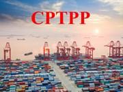 Le Vietnam et la Nouvelle-Zélande préparent l'entrée en vigueur du CPTPP