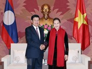L'Assemblée nationale vietnamienne soutient la coopération gouvernementale Vietnam-Laos