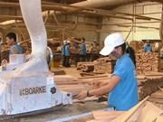De belles perspectives pour les exportations de bois en 2019