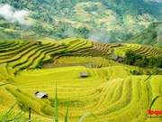 Le Vietnam parmi les destinations les plus impressionnantes