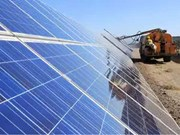 La société indienne Waaree Energies met en activité une centrale solaire au Vietnam