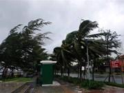 Le typhon Molave frappe Quang Nam et Da Nang