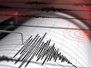 Un séisme de magnitude 6.3 frappe les îles Tanimbar en Indonésie  
