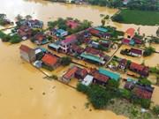 Germanwatch: Le Vietnam parmi les 10 pays les plus touchés par le dérèglement climatique