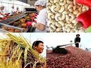 Le secteur agricole enregistre une exportation excédentaire de 7,45 milliards de dollars