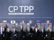 Le CPTPP profite énormément aux entreprises vietnamiennes