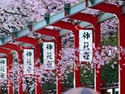 Bientôt une réunion de promotion de l'investissement et du tourisme Hanoi - Japon