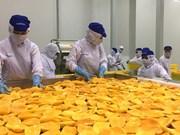 Hô Chi Minh-Ville: les exportations s'établissent à plus de 6 milliards de dollars en 2 mois