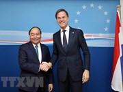 Le Vietnam et les Pays-Bas devraient mettre en place un partenariat intégral