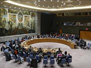 Le Vietnam contribuera beaucoup s'il est élu au Conseil de sécurité de l'ONU