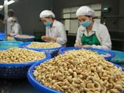 Noix de cajou: hausse prochaine du prix d'exportation