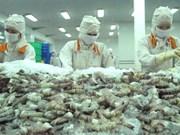 Les États-Unis prolongent les droits antidumping sur les crevettes vietnamiennes