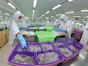 Le Vietnam invite l'Australie à lever l'embargo sur la crevette