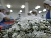 Les exportateurs de crevettes misent sur le marché de fin d'année