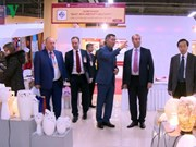 L'ALE UEEA-Vietnam : un enjeu capital du commerce Vietnam-Russie