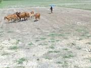 Des engagements forts pour épauler le delta du Mékong
