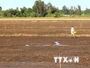Le delta du Mékong se mobilise contre le réchauffement climatique