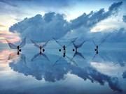 Trois photos vietnamiennes finalistes de l'APEC Photo Contest 2017