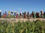 Dacca et Rangoun discutent du rapatriement des Rohingyas