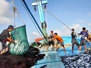 Mesures urgentes prises pour répondre à l'avertissement de l'UE sur la pêche INN