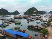 De grands projets touristiques débarquent dans la ZES de Vân Dôn