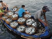 Coopérer pour gérer la pêche et protéger l'environnement en Mer Orientale