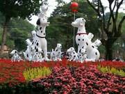 Festival des fleurs de Tao Dàn, retour au printemps au Sud